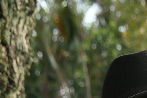57歲的陳昇談對於現在網路上的霸凌,一點都不想體會,所以他沒有使用臉書、微博等社群平台,甚至連電子信箱都沒有,網路霸凌對他沒用!據《中國時報》報導,陳昇雖然有隻陽春型手機,但常都不帶出門,而且還表示...