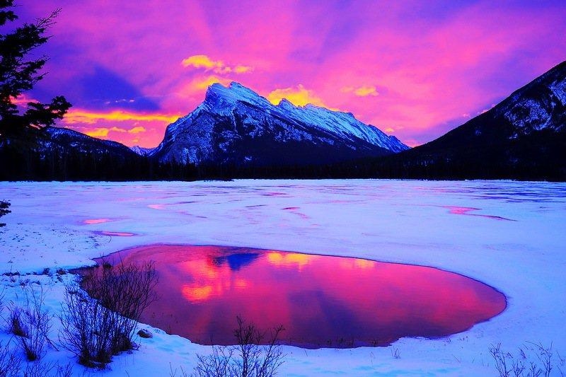 滿天粉紅彩有如人間仙境。 陳海騰