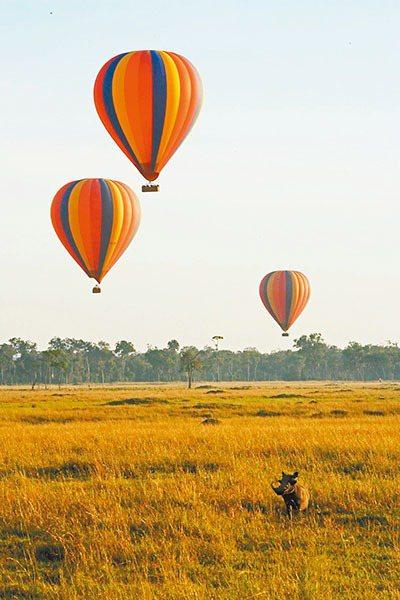 非洲肯亞有乘坐熱氣球欣賞動物大遷徙的行程。圖/易遊網提供
