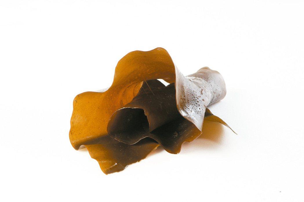 海藻。 圖/本報資料照片