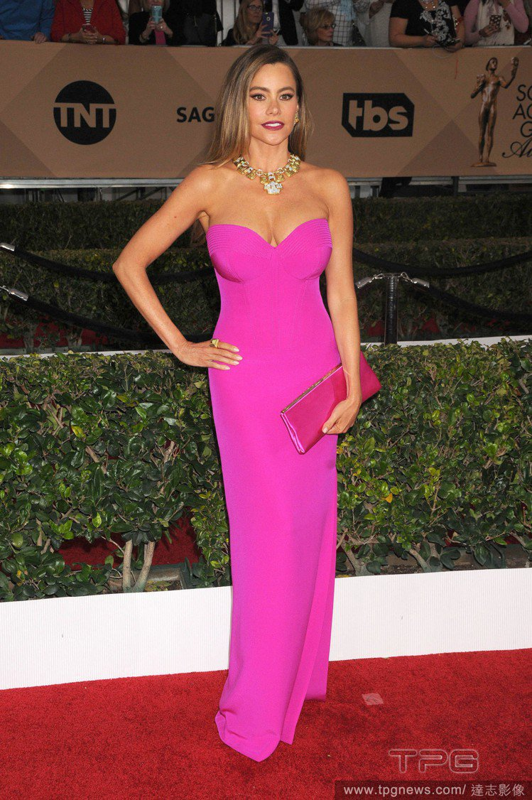 Sofia Vergara 的 Vera Wang 禮服將她的身形完美展現,不過...