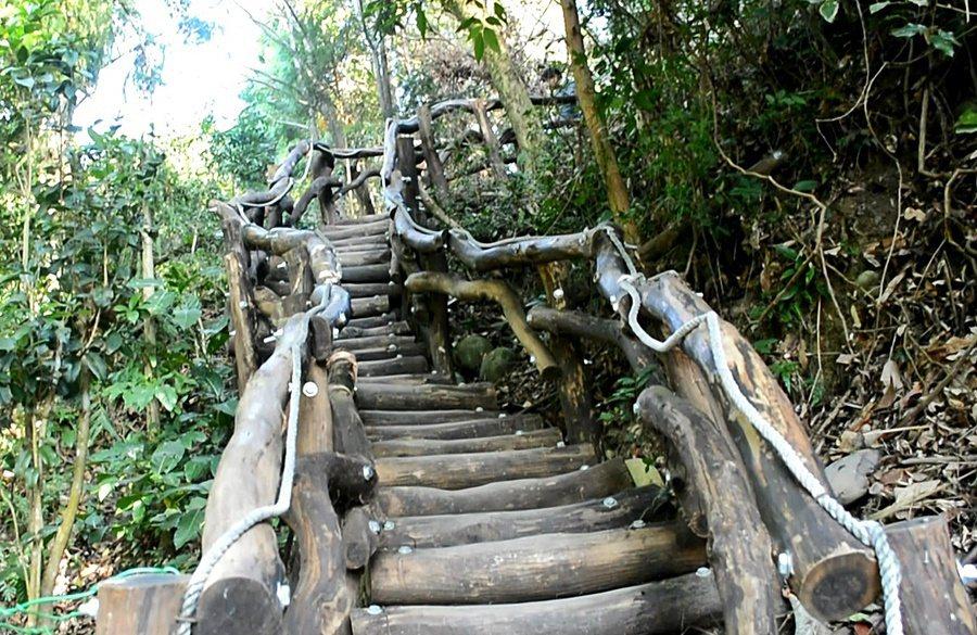人稱四號步道「台中的萬里長城」,沿著稜線起伏的木棧道,走起來費力,但是登高可以望...