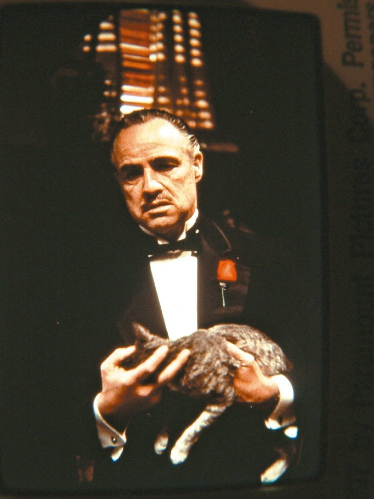 電影《教父》經典台詞:「不顧家的男人,不是一個真正的男人。」圖/聯合報資料照