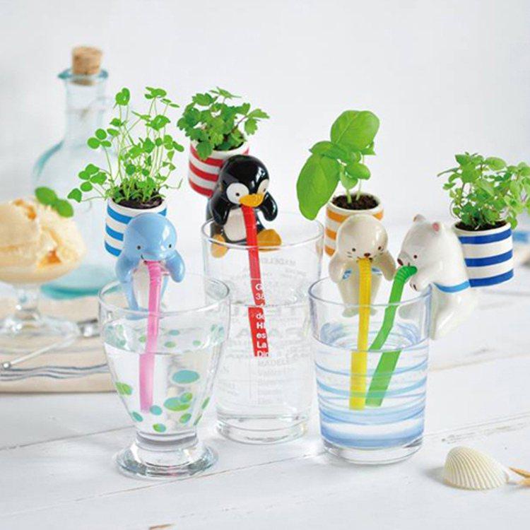 渴渴吸里動物栽培育桌面草,市價299元、特價239元。圖/momo購物網提供