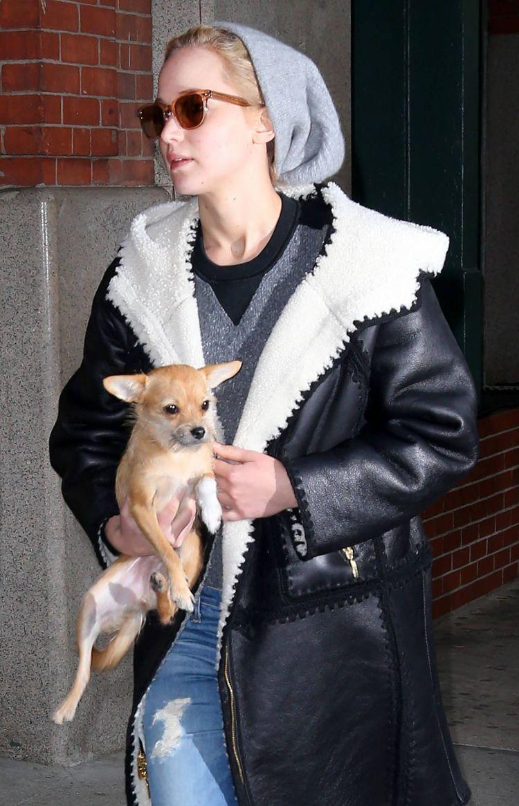 珍妮佛勞倫斯近來熱愛 Alberta Ferretti 的翻領皮革大衣,穿著它趴...