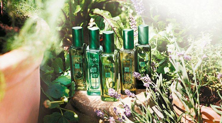 草本園系列香水,各款2360元(30ml)。 JO MALONE/提供