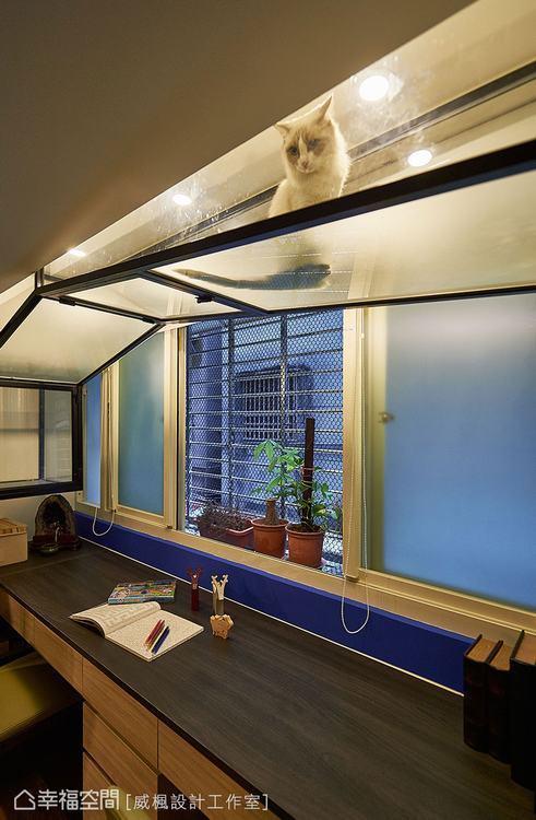 ▲玻璃空中廊道讓貓房與主臥緊密串連。