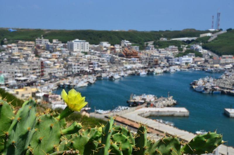 西嶼的外垵漁村,有著希臘地中海城鎮般的迷人景色。(趙相瑀攝影)