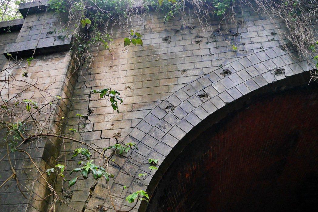 崎頂子母隧道還可見二戰期間遺留下來的彈孔痕跡。 記者陳威任/攝影