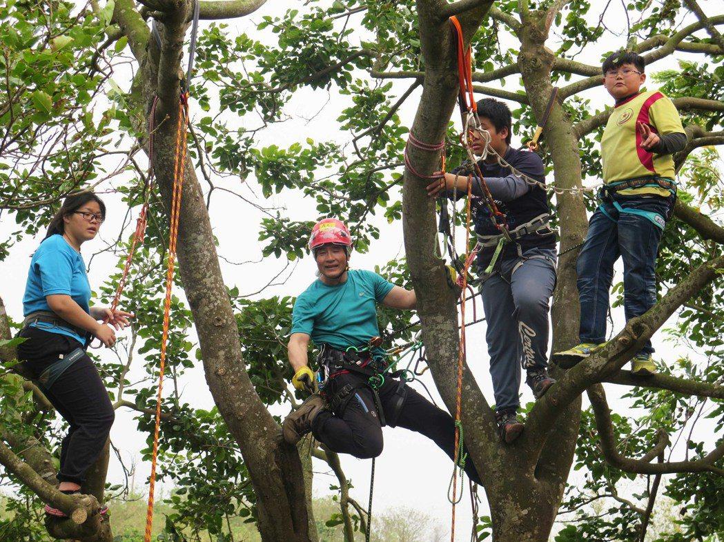 民間也有人教專業爬樹課,一個人收費750元至1000元,林義成(左二)教偏鄉小學...
