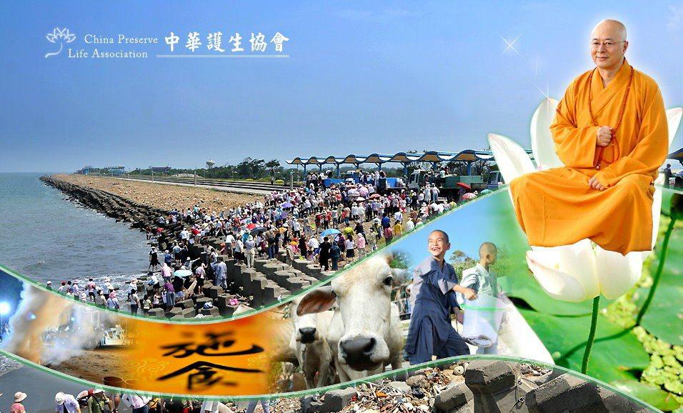 圖/取自中華護生協會