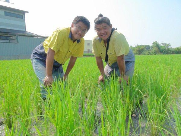 以國產小麥「十八麥」打響名號的農民馬聿安(左),電商對農民有很多限制,他個人並不...
