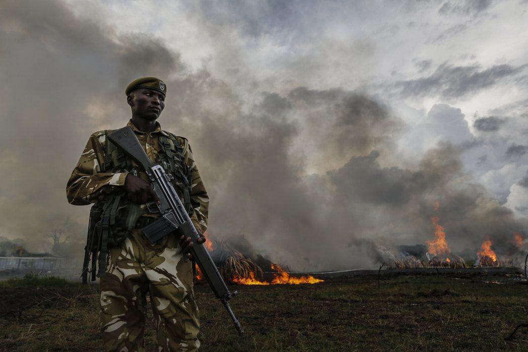 肯亞野生動物保護局的護林官,全副武裝地守在「火葬場」。 圖/歐新社