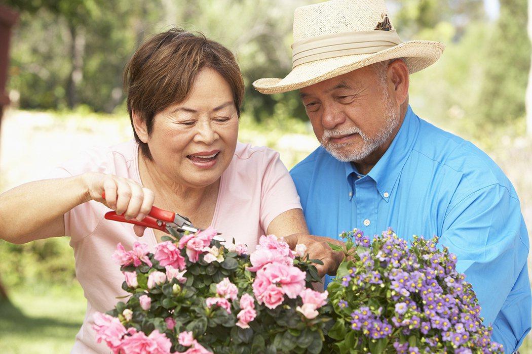 更年期女性可以嘗試養小狗、小貓的寵物療法,或者租一塊地當農夫,種花種菜的園藝療法...