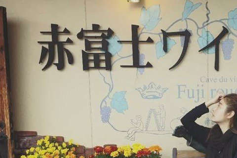 舒淇與好友林心如一起到日本度假遊玩,舒淇在微博上大曬兩人「恩愛」照,像是兩人在街頭背影照,還有兩人靠在雕像旁的照,兩位「花樣姐姐」玩得可開心了。