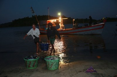 緬甸古亞漁村凌晨魚船入港。 記者黃義書/攝影
