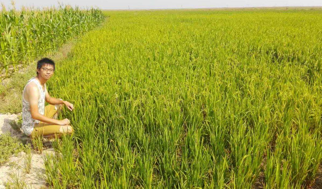 緬甸稻農蔡磊堅。 圖/蔡磊堅提供