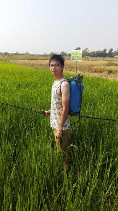 緬甸稻農蔡磊堅凡事親力親為。 圖/蔡磊堅提供