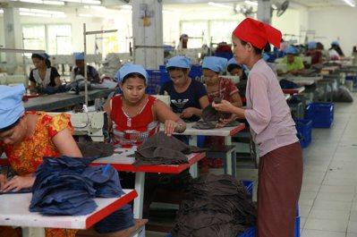 緬甸製帽廠裡女工居多。 記者黃義書/攝影