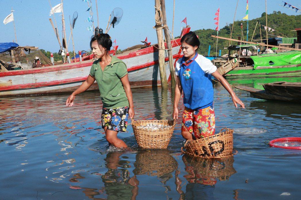 古亞(GWA)漁村辛勤工作的婦女。 記者黃義書/攝影