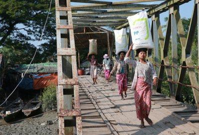 緬甸常見女人辛勤班運貨物。 記者黃義書/攝影