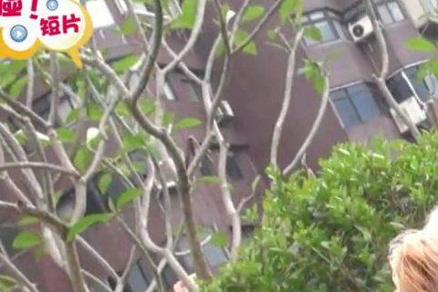 陳美鳳帶毛小孩妞妞出來玩被噓編發現牠竟是傳說中的「犬界波霸」果然印證什麼樣的主人,就有什麼樣的寵物(羞)