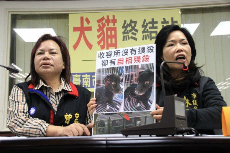 台南市議員曾培雅、林美燕召開記者會,說明收容所內犬隻互相傷害的情況。 圖/聯合報...