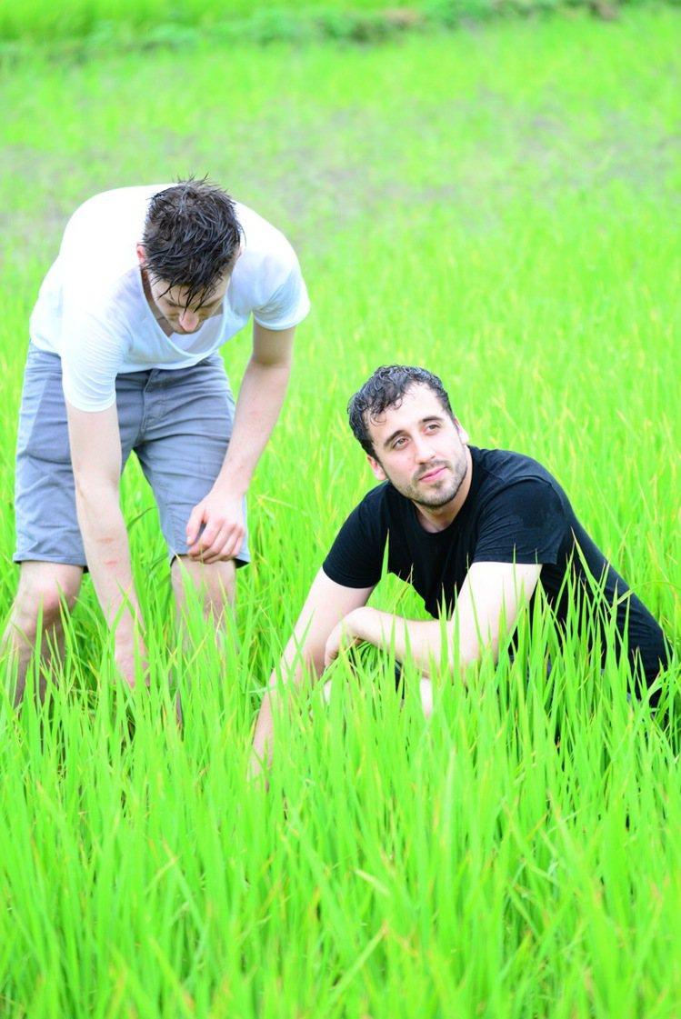 主廚詹姆斯夏曼造訪台灣南部,體驗稻田鄉村之美。圖/好丘天母店提供