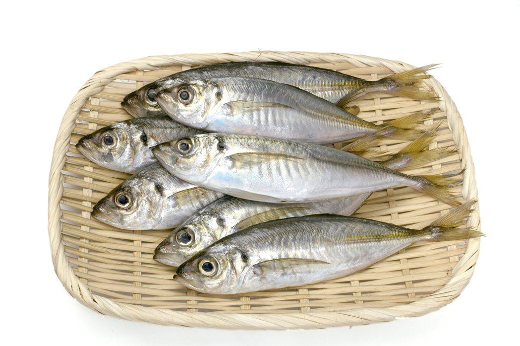 魚 圖片來源/Sozai-Page