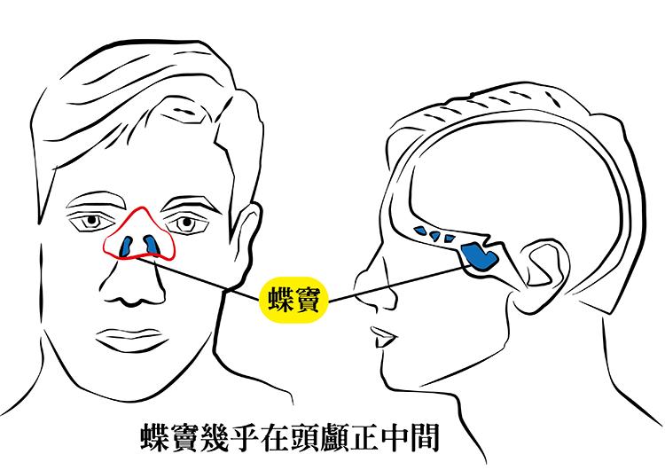 繪圖/記者陳韻如