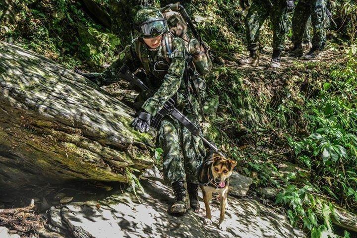 教士在粉絲頁介紹曾經和特戰部隊一起行軍、為部隊站哨的犬隻「HOLA」。 圖/取自...