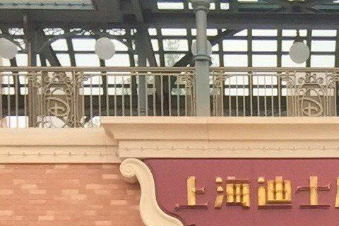 林熙蕾7日帶著女兒跟老公到上海迪士尼遊玩,開心的在拍下許多照片,不過一張自拍照讓網友發現女神有白頭髮了!不過林熙蕾不以為意,還笑稱:「你們不累,媽媽累到頭髮都白了」看來忙著帶孩子的林熙蕾真是辛苦,不...