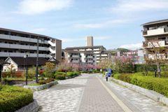 台北公共住宅爭議何來?借鏡京都醍醐的市營住宅
