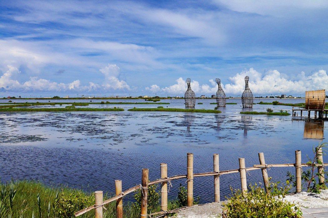 成龍濕地從過去的良田變成賞鳥景點。 記者陳威任/攝影