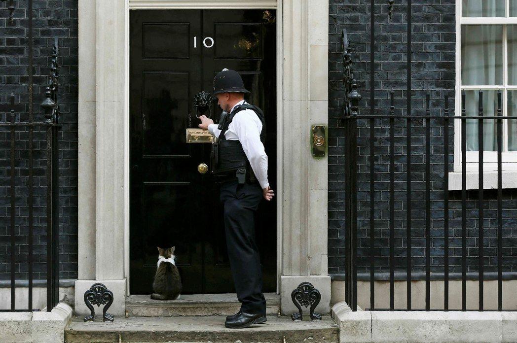「賴瑞貓的首席捕鼠官工作,將不會因為首相換人而有『貓事調整』。」 圖/路透社