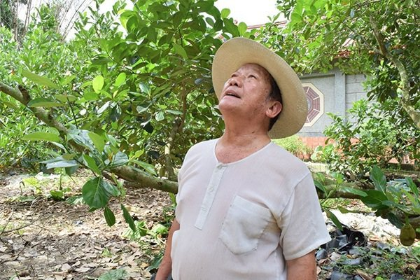 南投竹山的波羅蜜果農,林宗男先生。 攝影/王秀琳