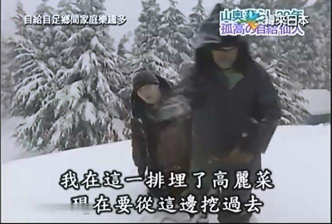 原來深雪之中,埋了梅本種的高麗菜,兩人正要去取食材。圖/取自網路