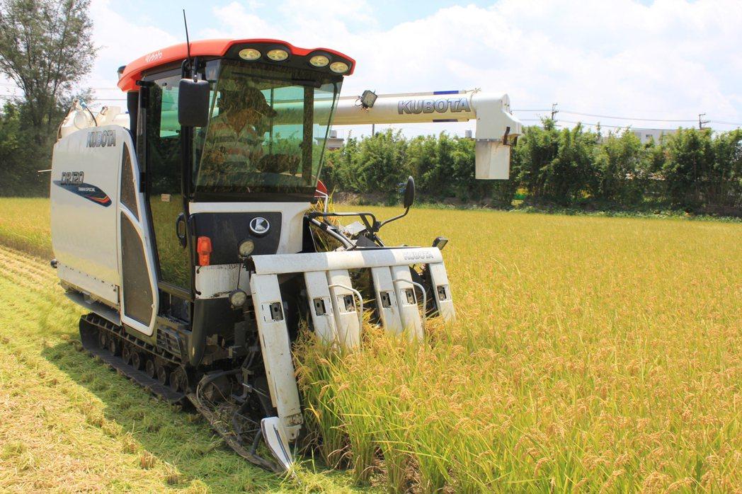 農委會表示,農方正導引農民生產高品質的稻米,量少品質好,價格較高,讓農民自然而然...