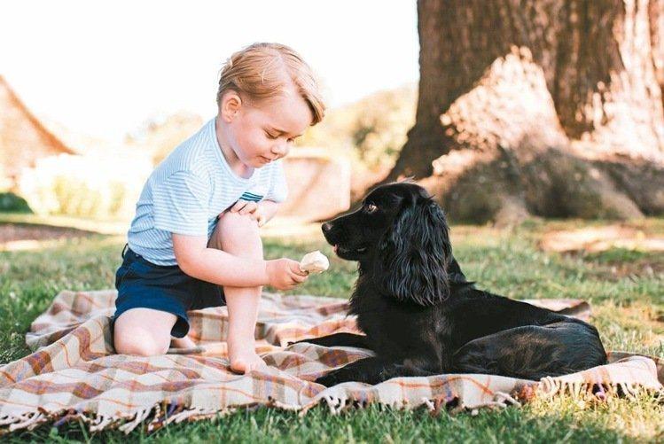 小王子在照片中穿著白底藍條紋搭配小口袋的T恤,看似普通的一件衣服,沒想到在照片曝...