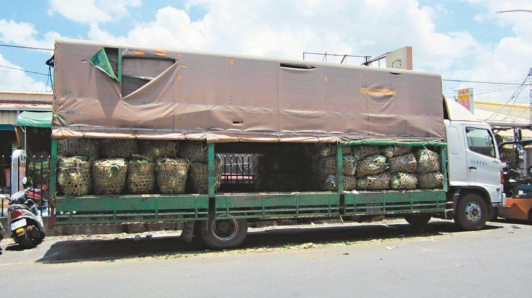 農產品運輸若沒加蓋防熱,容易腐爛。 記者彭宣雅/攝影
