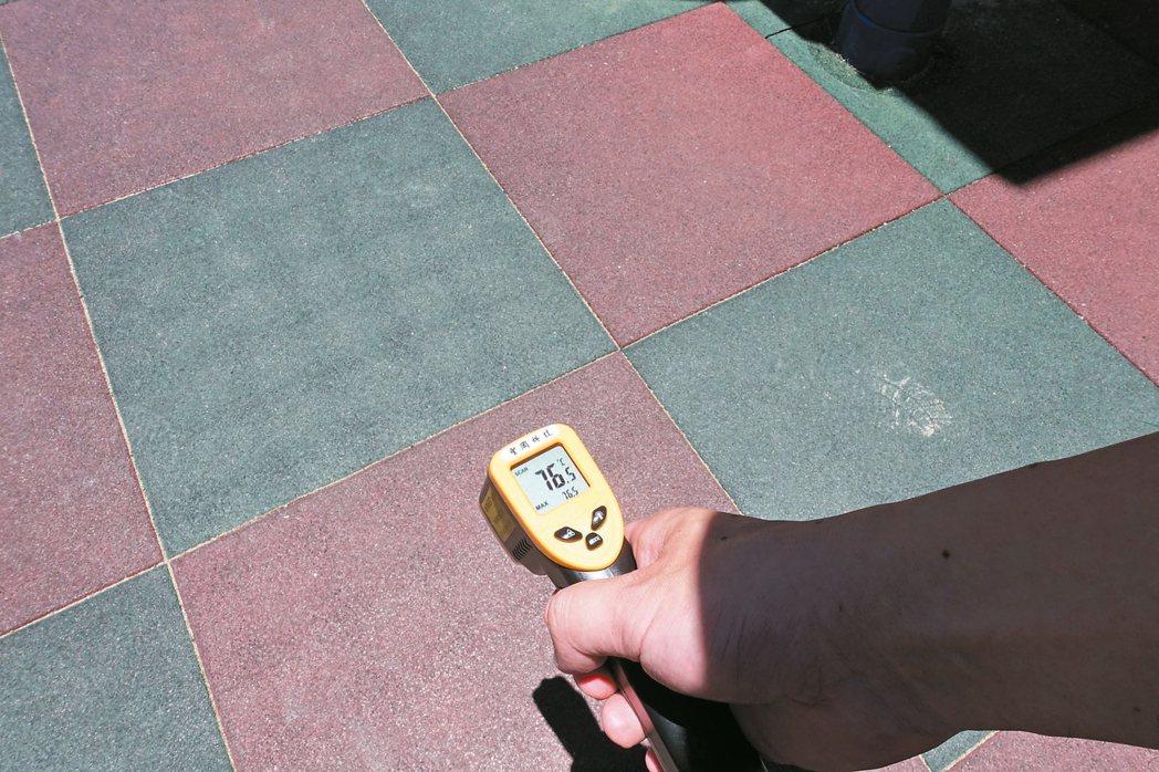 沙坑是48度。 記者邱瓊玉/攝影