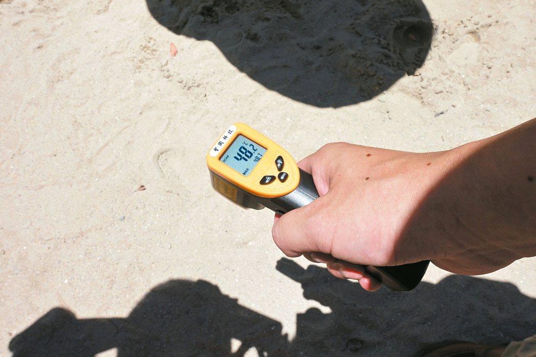不到中午12時,大安公園的地墊已高達火燙的76度。 記者邱瓊玉/攝影