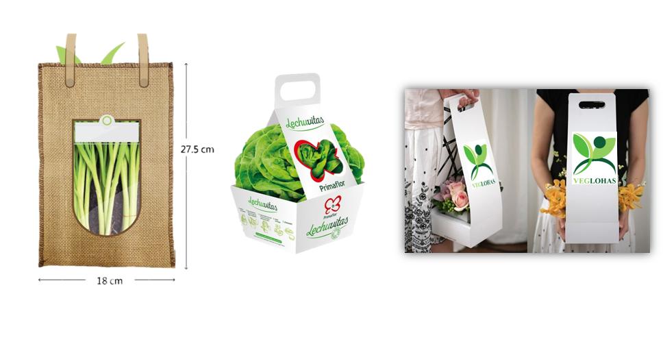 園藝包裝禮盒設計。 圖/蕭雯芳設計;林奕祺提供