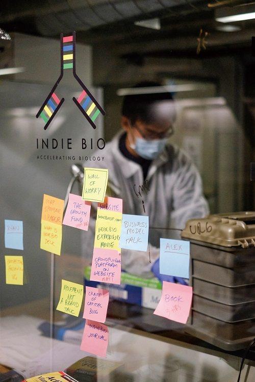 灣區新創公司能接觸世界一流加速器,其中Indie Bio為全球首個生醫加速器。