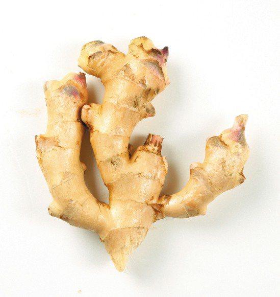 薑被用來平息胃部問題與治療惡心,也常被用來預防暈車。薑的獨特氣味,來自其內含的薑...