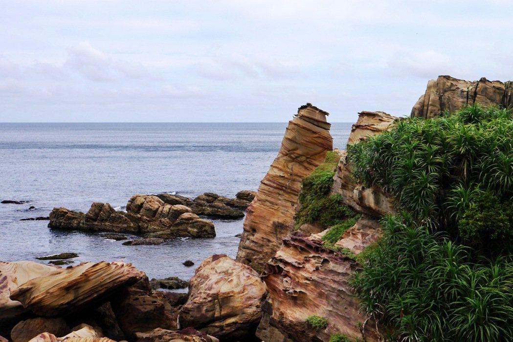 南雅奇岩呈現出奇岩嶙峋的奇特景致。 記者陳威任/攝影