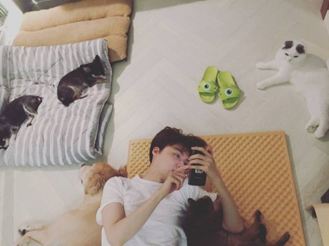 演員安宰賢最近才剛新婚,23日他在IG曝光他日常生活的近照,照片中的他正躺著滑手機,而他的房間竟然出現了狗與貓,其中還有狗狗與貓咪依偎著他發呆,畫面看來十分和諧又舒服。