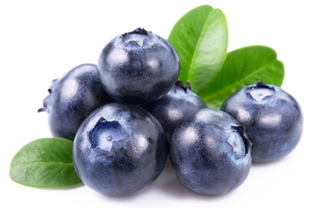 藍莓 圖/shutterstock