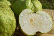 十大解亞硝酸鹽最夠力水果 第一名是它!