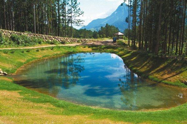 大學池、月牙灣(圖)都是溪頭著名景點。 圖/台大實驗林提供